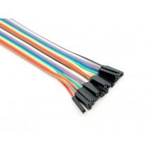 20 pin dual female splittable jumper wire - 300mm